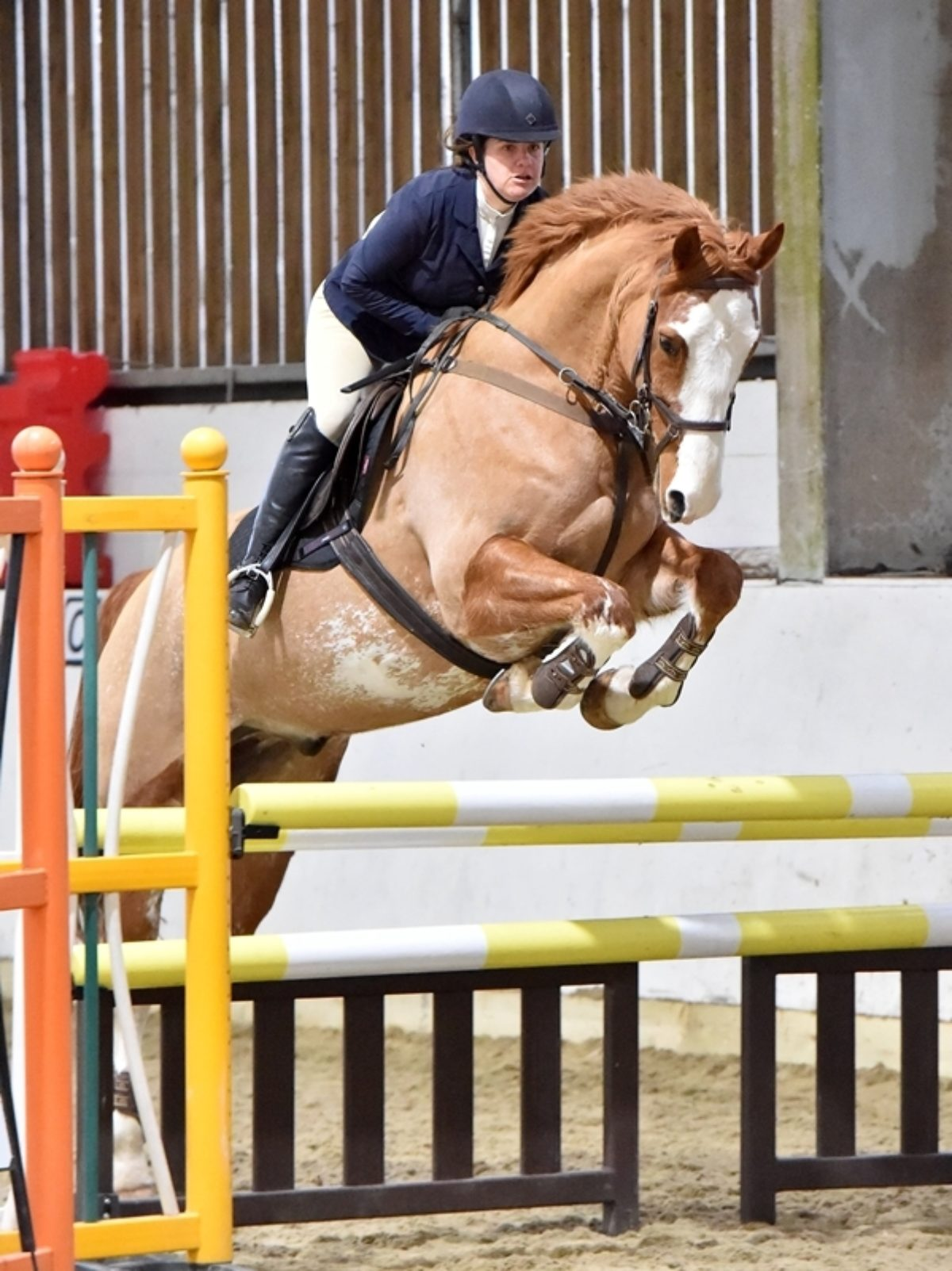 Good Friday Showjumping - Competitor Information